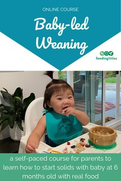If you have a baby 6 months old getting ready to start solid food, grab this online course created by feeding professional moms all about baby-led weaning and starting solids with real food. Share this pin for so other parents know their options too! #feedinglittles #babyled #baby #solids Baby Led Weaning Breakfast, Baby Led Weaning First Foods, Baby First Foods, Baby Weaning, Starting Solids Baby, Solids For Baby, Feeding Baby Solids, Colic Baby, Baby Feeding Schedule