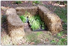 Straw bale cold frame- It's important that you place your straw bale frame car… - Modern Cold Frame, Frame It, Is It Spring Yet, Straw Bale Gardening, Straw Bales, Farm Gardens, Raised Beds, Hedges, Root Cellar