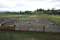 horse trail obstacles - Google Search