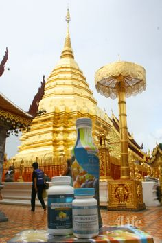 Taking Transfer Factor to the World - Thailand - Tailandia. And world