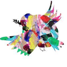 Rainbow Coloured Bird