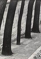 Otto Steinert #steinert #paris #lempertz