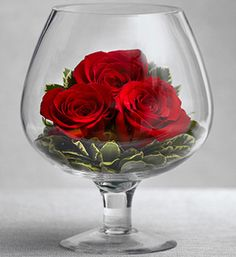 Roses in a Large Brandy Drinking Glass