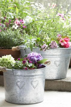 Galvanized buckets planted with flowers