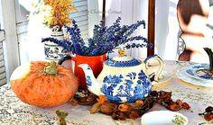 Pumpkin, Teapot, Salvia