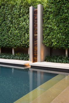 Love the new style of pool water feature - By trimming the top and sides of tall screen trees to around a metre above fence height (also known as pleaching or hedges on stilts), you'll get screening where you need it, without blocking light from coming into your garden
