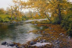 And The Leaves Began to Fall by Andrew Orr Oil ~ 16 x 24