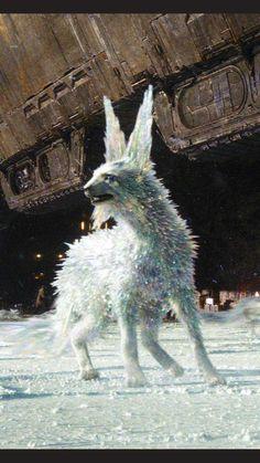 Ice Wolf phone screen background - Imgur