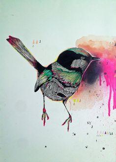 Original Bird Illustration by Jasmin Dwyer