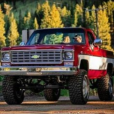 Chevy Pickup Trucks, Old Ford Trucks, Gm Trucks, Diesel Trucks, Vintage Pickup Trucks, Classic Pickup Trucks, Single Cab Trucks, Lifted Chevy Trucks, Lifted Ford