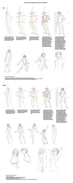 Figure_Drawing_Tutorial_by_StudioQu.jpg Photo by muzzoid   Photobucket