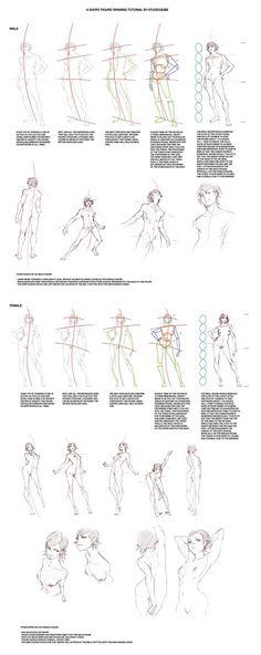 Figure_Drawing_Tutorial_by_StudioQu.jpg Photo by muzzoid | Photobucket