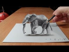 Trick Art, How to Draw 3D Elephant, Time Lapse>>> I follow this channel on YouTube and this guy is really good Ive seen a lot of his videos and every time I'm just amazed