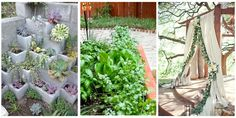 10 Gardening Trends That Will Blossom in 2016  - HouseBeautiful.com