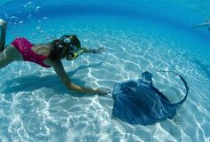 Here are the list of top 6 things to do in Cayman Islands. Cayman Islands is a great choice to travel and a trip to Grand Cayman is just like a ticket to paradise as it has a lot of things to offer tourists to do and have fun.