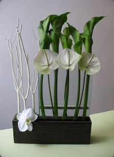 Green godddess calla lilies, white anthurium are dramatic elements in this modern flower arrangement - FloraNY #green #flowers