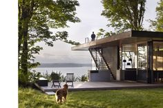 bliss.  excellent siting for the lot - bringing the #outdoors in with a modern sensibility.  and the puppy has freckles.