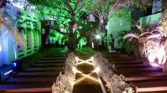 iluminação cênica na passarela da cerimonia ao ar livre.