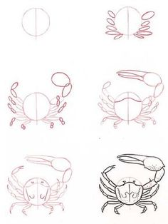Hoe teken je een crab: