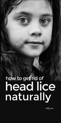 Use these simple natural lice remedies at home to get rid of head lice and nits in your family's hair and as a lice prevention regime going forward so you break the cycle of lice and nits if your kids keep getting them. Learn how to make the best natural lice remedies using coconut oil and tea tree oil and why mayonnaise and Listerine don't work. #liceremedies #getridoflice #liceprevention #naturalremedies #kidshealth