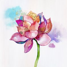 buddhabe:  lotus art