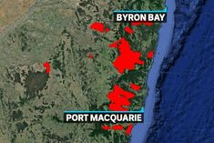School closures and evacuations warnings as NSW catastrophic fires loom for Sydney - ABC News Bushfires In Australia, Coral Castle, Port Macquarie, Australian Bush, Fire Fighters, Faberge Eggs, Charles Darwin, Cool Countries, Spanish Quotes