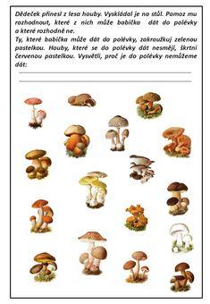 Výsledek obrázku pro pracovní listy houby Movie Posters, Film Poster, Billboard, Film Posters