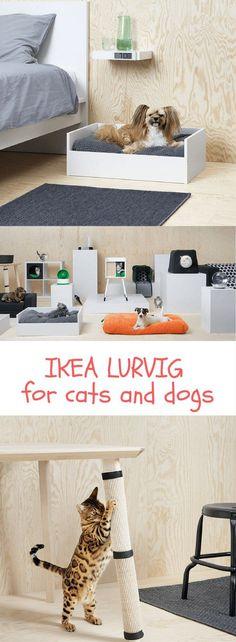 81 best Katzenmöbel DIY selber machen images on Pinterest Cat