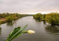 Река Одер. Вечная память нашим бойцам погибшим при ее форсировании #Польша #дорогипамяти #автопробег #автопробег2016 #память #вов #9мая #ДеньПобеды