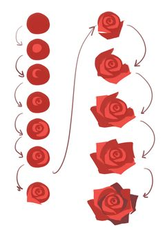 "japhers: ""it always helps to use reference pictures but in general here's a quick basic process for really fast rose making if you're pressed for time :D just remember that the petals are usually more..."