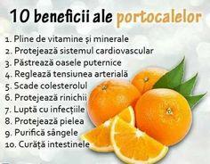 Physical Activities, Metabolism, Health Fitness, Orange, Fruit, Food, Smoothie, Sport, Diet