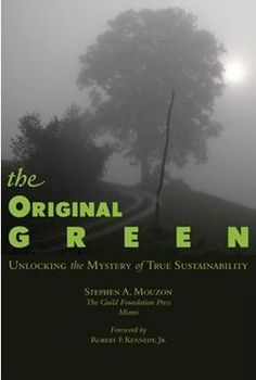 Steve Mouzon The Original Green & Learning from Old Buildings vimeo Documentary.  http://www.treehugger.com/culture/the-original-green-by-steve-mouzon-a-must-read-if-you-care-about-sustainable-design.html
