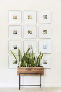 Living Room Decorating Ideas How To Create a Cohesive Gallery Wall From Photos - Cate Holcombe Interiors Family Room Decorating, Decorating Ideas, Decor Ideas, Inspiration Wall, Decoration, Living Room Decor, Bedroom Decor, Master Bedroom, Modern Bedroom