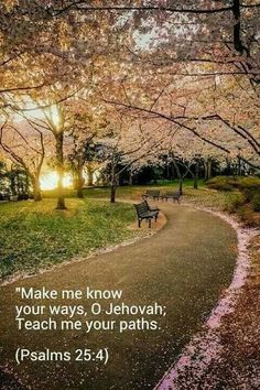 Psalm 25: 4 Make me know your ways, O Jehovah; Teach me your paths - - 119: 105 Your word is a lamp to my foot, And a light for my path