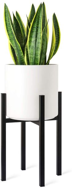 Elegant Contemporary Single Basket Curlicue Plant Stand use Indoors or Outdoor