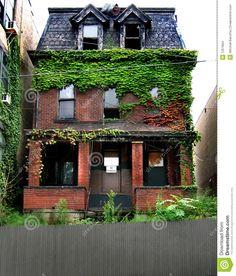 Attic. Ivy. Detroit
