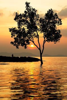 """""""Life is all about enjoying every sunset and looking forward for the next Sunrise."""""""