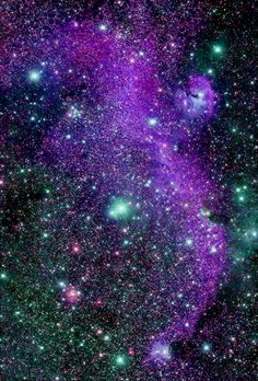 ˚The Seagull Nebula in the constellation Canis Major