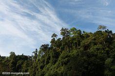 Top 10 Environmental Stories of 2013