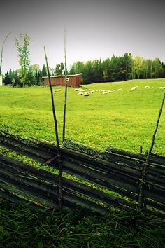 Scandinavian Country Style - Norwegian countryside - <3 the fence!!