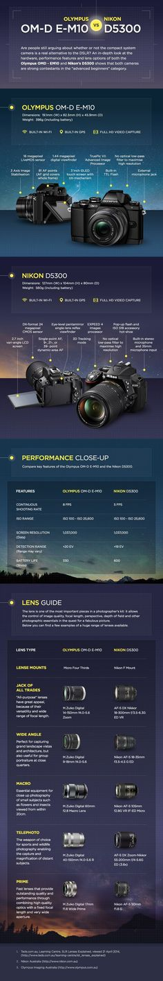 Olympus OMD - EM10 vs Nikon D5300 infographic - Ted's Cameras