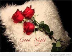 So srry dear aaj bhi aakh lag gaya n so gaya.... Aap mere liye kisise bhi kam nahi ho.... Gud night n sweet dreamz...have a peacefull sleep....