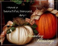 Good Morning Good Night, Good Night Quotes, Morning Wish, Monday Blessings, Thankful Quotes, Thanksgiving Quotes, Best Vibrators, Encouragement Quotes, Happy Monday