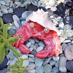 Ceramic Herman Hermit Crab Sculpture glazed in sumptuous red actually lives in a real seashell @Wabisabi Green.
