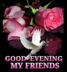 My Friends, Good Evening evening good evening good evening quotes evening friend quotes Good Evening Photos, Good Evening Messages, Good Evening Greetings, Evening Pictures, Happy Evening, Night Pictures, Good Night Blessings, Good Night Wishes, Good Night Sweet Dreams