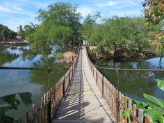 """A suspension bridge leads to a small island in the Laguna Zacatecas or """"Laguna del Iguanero"""" in El Rosario, Sinaloa, Mexico."""
