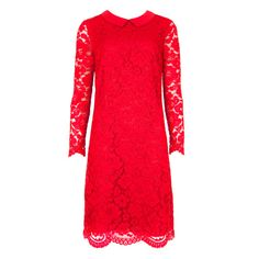 Pretty Scalloped Hem Lace Dress from Ted Baker