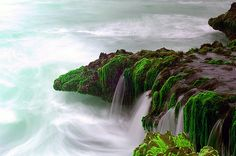 Maghseel : the place where u can see a wild sea in Salalah - Oman   the sound of the sea hitting the rocks was amazing.