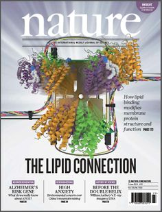 Nature, Volume 510 Number 7503. Many of the high-resolution membrane protein structures published recently are notable for the presence of lipids closely associated with the protein, prompting the question, how are these lipids influencing membrane complex structure? On the cover, IM-MS captures a native membrane protein complex emerging from an ion mobility cell. Shown is the ammonia channel in apo, one- and two-lipid bound states. Cover: Arthur Laganowsky