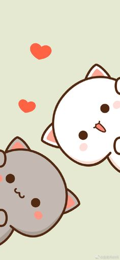 Gatos Wallpapers, Wallpaper Gatos, Cute Panda Wallpaper, Panda Wallpapers, Bear Wallpaper, Cute Disney Wallpaper, Kawaii Wallpaper, Cute Cartoon Wallpapers, Cute Wallpaper Backgrounds